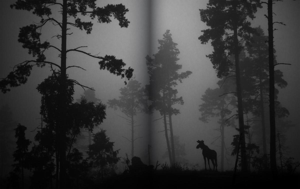 Aukeama Collection Kakkosen kirjasta Luonto